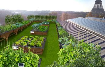 et si nos toits devenaient un jour notre garde manger d nicher. Black Bedroom Furniture Sets. Home Design Ideas